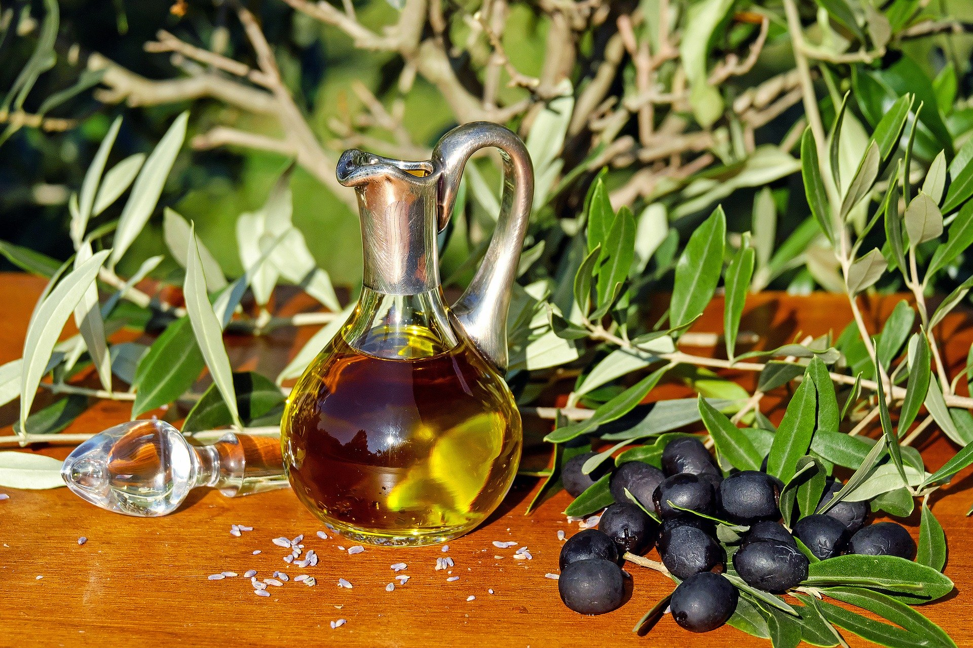 Reducing the risk of cancer and cardiovascular disease with polyphenols